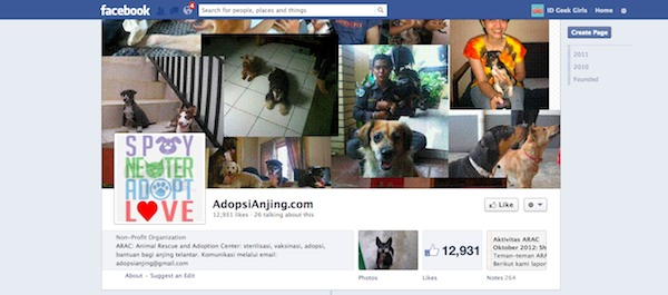 adopsi anjing_id geek girls blog_01