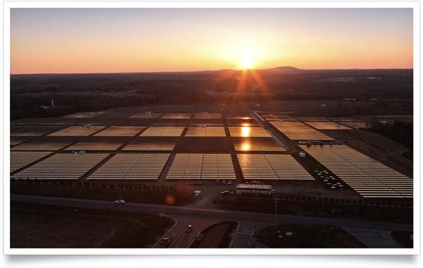 apple solar plant_id geek girls blog