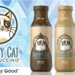 grumpy cat grumppuccino_id geek girls blog